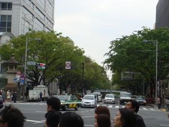 2009.4.20  お散歩_a0083571_16223377.jpg
