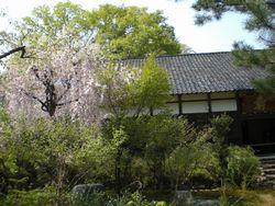 金沢の郊外にある禅寺。大乗寺_b0150576_1122976.jpg