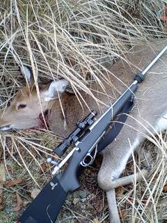 日本鹿のクリーンキルを目指して  その1_e0056797_17244127.jpg