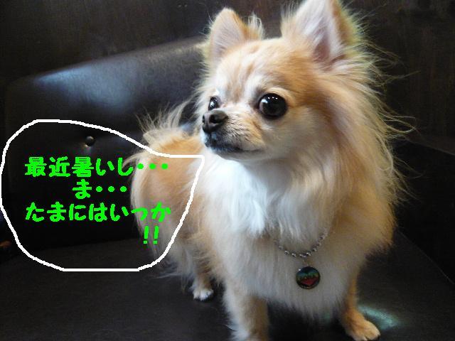 b0130018_10454772.jpg