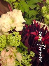 季節の花_c0130553_20113124.jpg