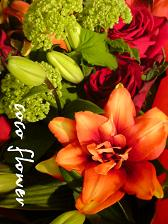 季節の花_c0130553_2011575.jpg