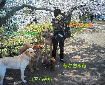 f0034156_1063636.jpg