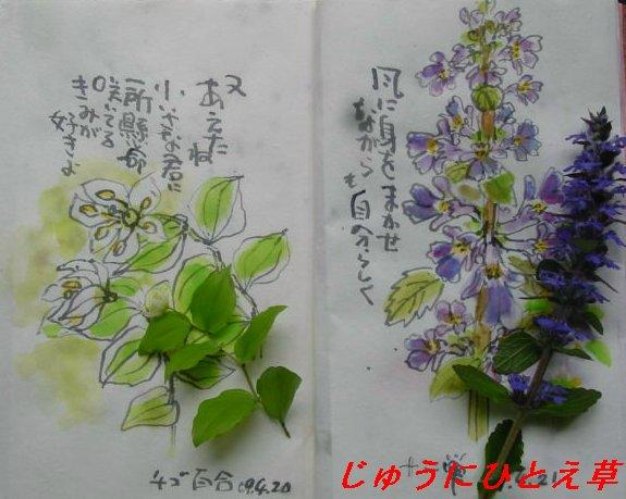 f0179357_10113738.jpg