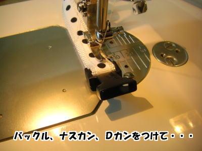 d0020869_12492843.jpg