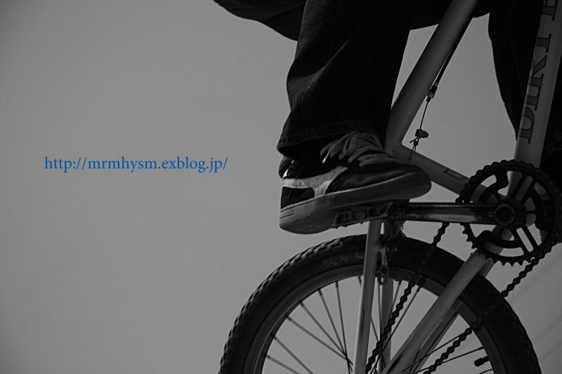 ワン&BMX撮影_b0123371_0575051.jpg