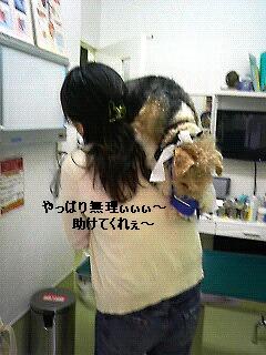 病院行ってきましたぁぁぁぁぁぁ_f0208806_21312178.jpg