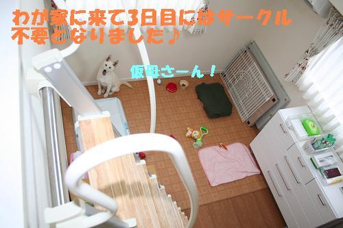 f0121712_16205516.jpg