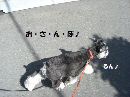 f0197317_1581113.jpg