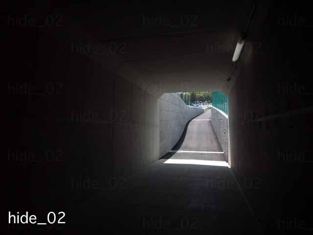 f0174521_581977.jpg