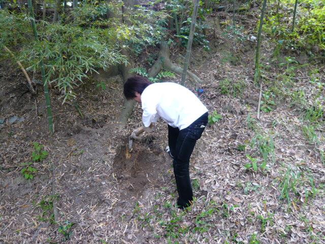 タケノコ掘り掘り~☆_b0077531_027570.jpg