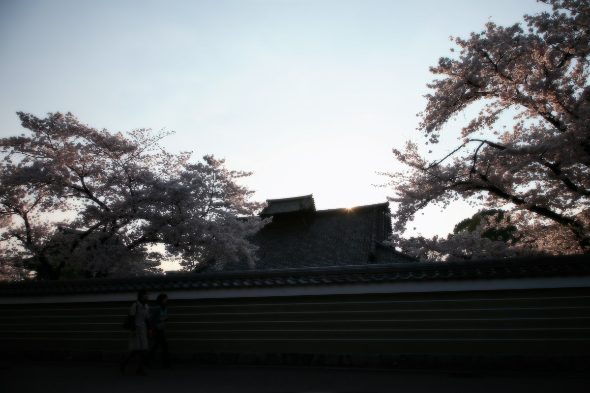 そうだ 京都、行こう。_f0021869_2232186.jpg