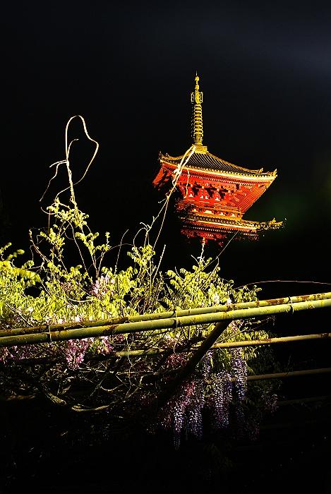 春の夜景に酔いしれて_c0152379_21393889.jpg