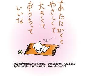 b0089483_339019.jpg