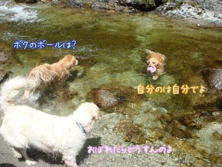久しぶりの尾白川で初泳ぎ_f0064906_19452023.jpg