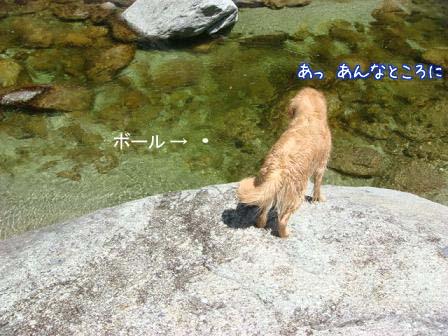 久しぶりの尾白川で初泳ぎ_f0064906_19484447.jpg