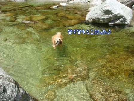 久しぶりの尾白川で初泳ぎ_f0064906_19493168.jpg
