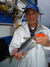 2009年4月21日 火曜日 フラッシャーサビキ五目~マルイカ_f0031613_18253861.jpg