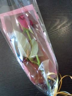 花と本_f0064823_15554975.jpg