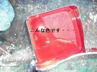 塗装工事2日め_f0031037_20555029.jpg