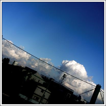 c0057746_7301559.jpg