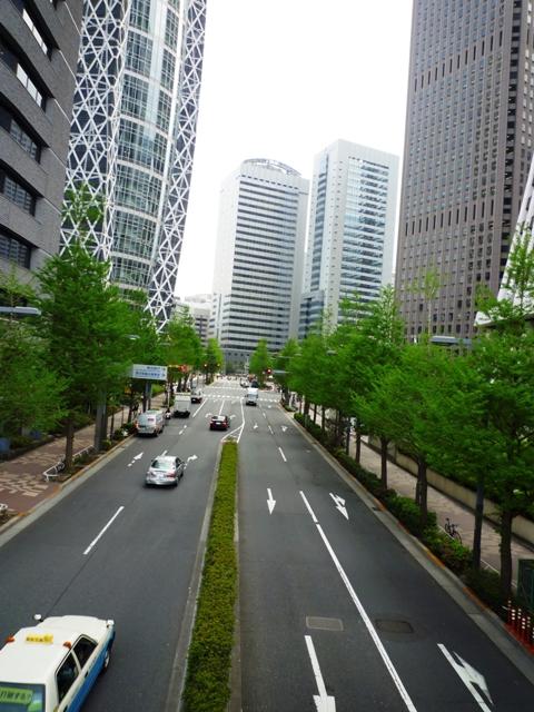 街路樹…新期が始まりました…_b0093660_13205539.jpg
