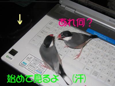 b0158061_218446.jpg