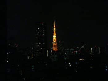2009.4.22  この頃の東京タワー_a0083571_072336.jpg