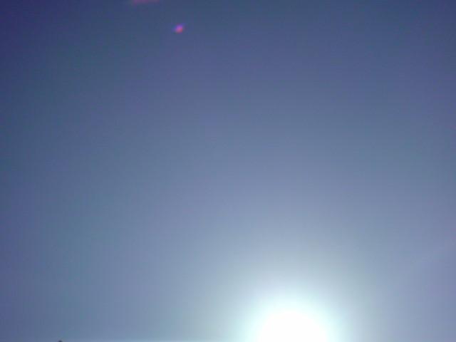 「超~眩しい~力強い太陽」_e0051174_8341670.jpg