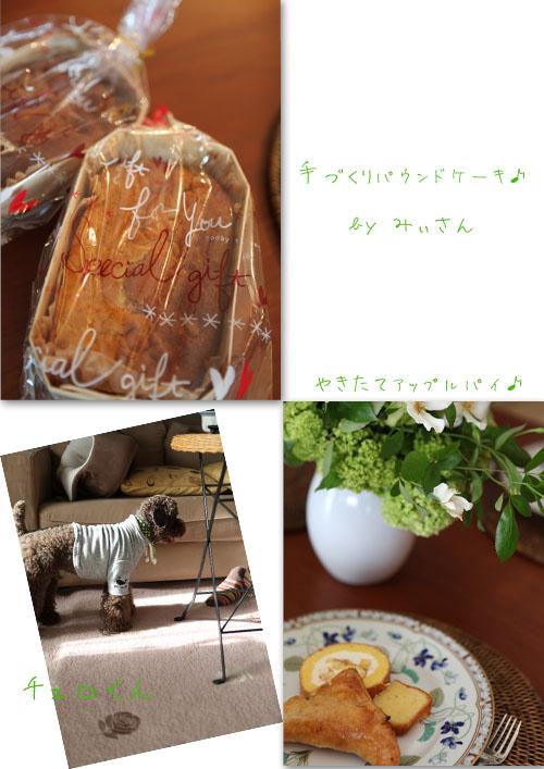 f0127388_935482.jpg