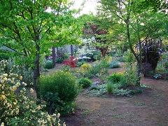 春の庭実況中継_f0207652_1329851.jpg