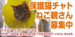 f0034156_2056453.jpg