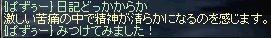 d0039293_1962644.jpg
