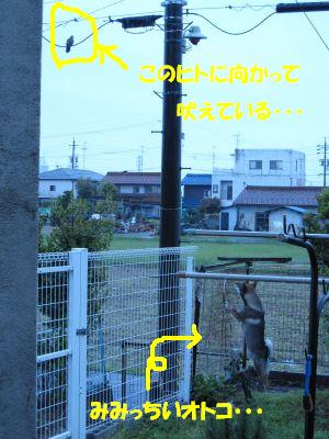 f0143123_13372554.jpg