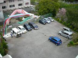 鯉のぼり、八重桜。_e0164724_012568.jpg