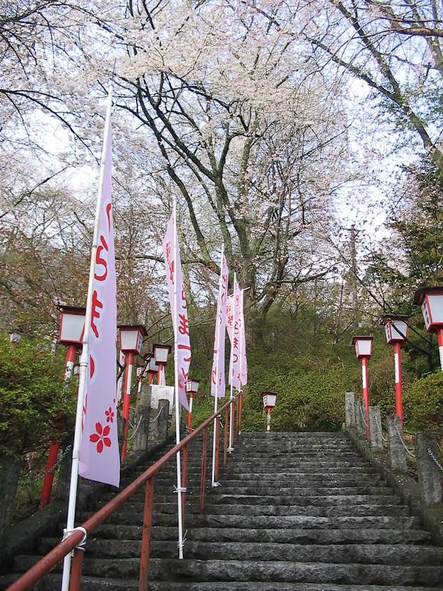 南部神社_d0001843_0264924.jpg