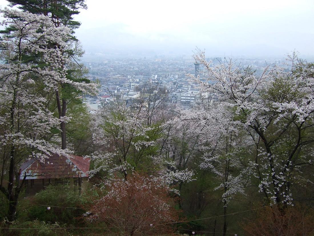 南部神社_d0001843_0281131.jpg