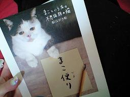 にゃんこ本_c0151965_1611197.jpg