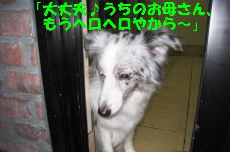c0171368_2228940.jpg