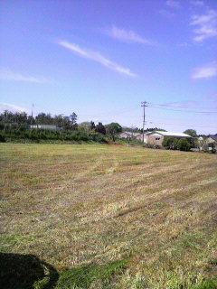 牧草刈り_e0063268_20152776.jpg