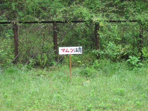 土讃線:坪尻_c0001670_21293794.jpg