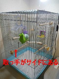b0062090_3211718.jpg