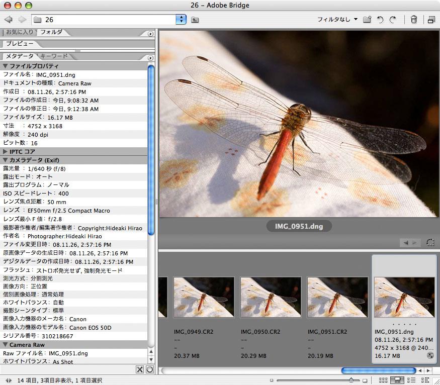 最近のカメラのRAWを古いバージョンのCamera Rawで開くには _f0077521_11185355.jpg