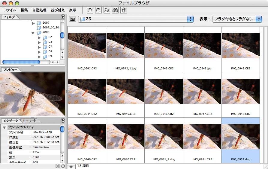 最近のカメラのRAWを古いバージョンのCamera Rawで開くには _f0077521_1158774.jpg