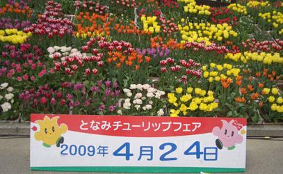 b0044404_22345459.jpg