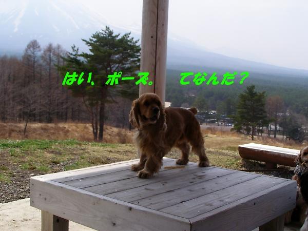 b0067012_22345989.jpg