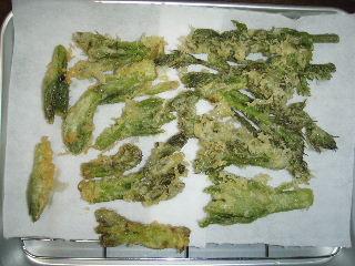 いよいよ山菜の季節です。_f0105112_13102212.jpg