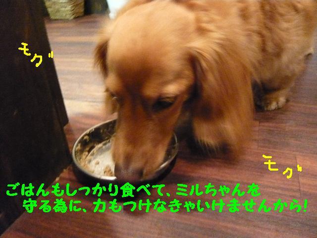 b0130018_20143639.jpg
