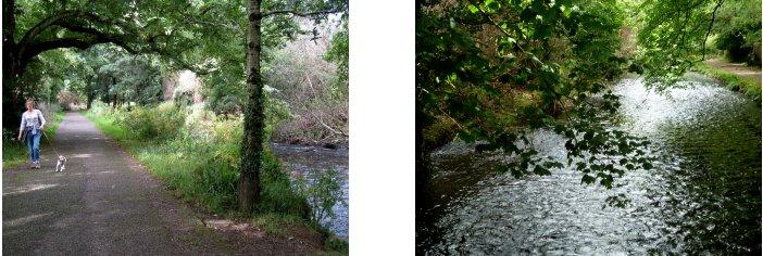 アイルランド編(37):キラーニー国立公園(08.8)_c0051620_6103425.jpg