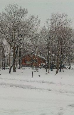 4月26日(日) ゆ ゆ 雪でっか(゚o゚)_d0082944_0483842.jpg